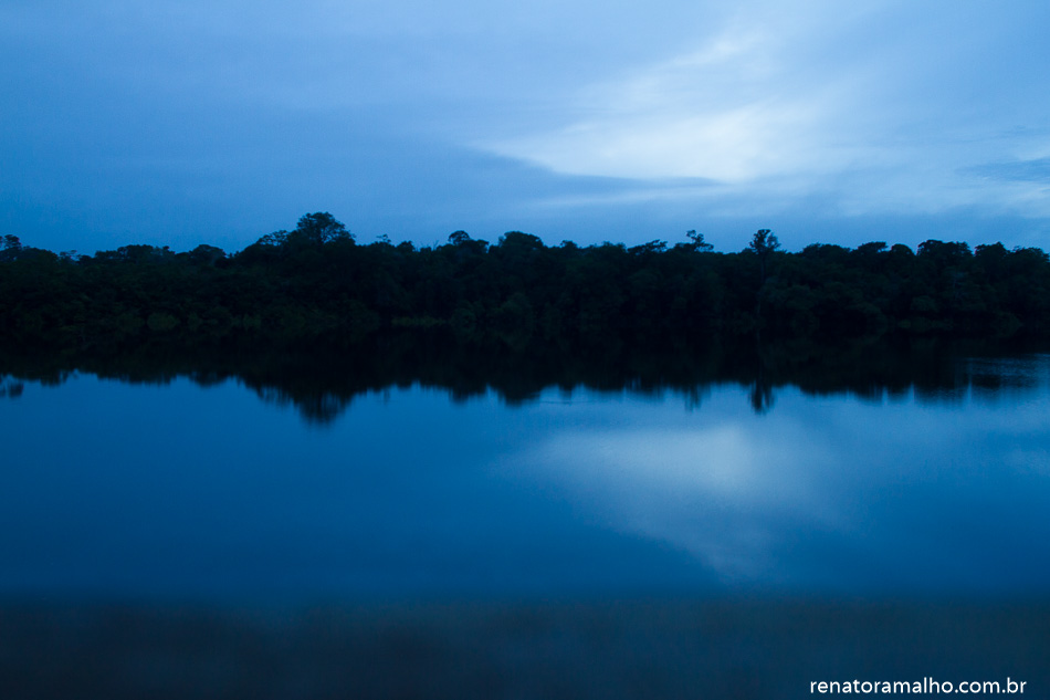 Amazônia | fevereiro 2015